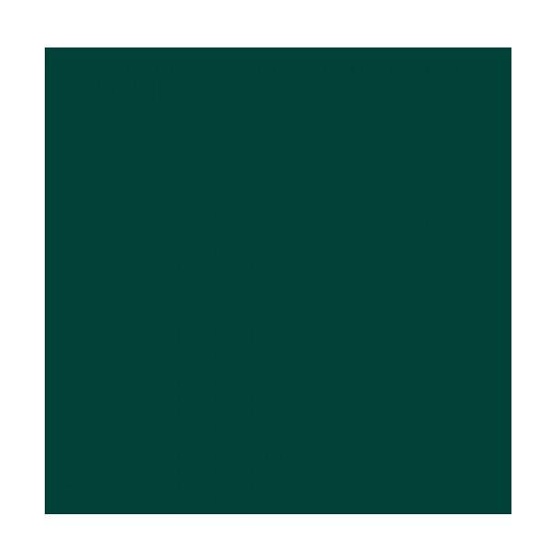 RAL 6005 (Verde Musgo)