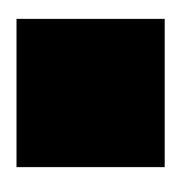 RAL 9005 (Negro)